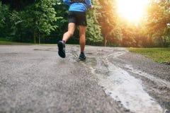 Mięśniowe łydki dysponowany męski jogger szkolenie dla przecinającego kraju lasowego śladu ścigają się w deszczu na natura śladzi Fotografia Stock