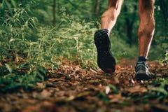 Mięśniowe łydki dysponowany męski jogger szkolenie dla przecinającego kraju lasowego śladu ścigają się w natura parku zdjęcie royalty free