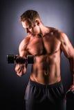 Mięśniowego mężczyzna pracujący out robić ćwiczy z dumbbells przy bicepsami Obraz Stock