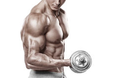 Mięśniowego mężczyzna pracujący out robić ćwiczy z dumbbells przy bicepsami, silny męski nagi półpostaci abs, odizolowywający Obrazy Stock
