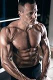 Mięśniowej i dysponowanej młodej bodybuilder sprawności fizycznej samiec wzorcowy pozować Fotografia Stock