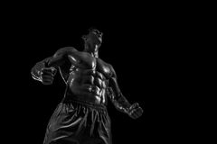 Mięśniowej i dysponowanej młodej bodybuilder sprawności fizycznej samiec wzorcowy pozuje ove Zdjęcie Stock