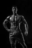 Mięśniowej i dysponowanej młodej bodybuilder sprawności fizycznej samiec wzorcowy pozuje ove Obraz Stock