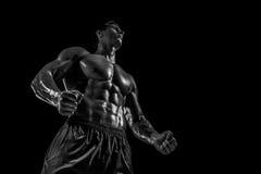 Mięśniowej i dysponowanej młodej bodybuilder sprawności fizycznej samiec wzorcowy pozuje ove Zdjęcie Royalty Free