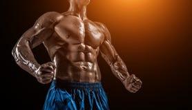 Mięśniowej i dysponowanej młodej bodybuilder sprawności fizycznej samiec wzorcowy pozuje ove Obraz Royalty Free