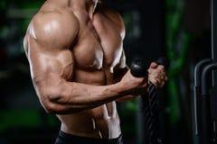 Mięśniowej przystojnej sportowej bodybuilder sprawności fizycznej wzorcowy pozuje afte Obrazy Royalty Free