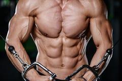 Mięśniowej przystojnej sportowej bodybuilder sprawności fizycznej wzorcowy pozuje afte Fotografia Royalty Free