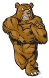 Mięśniowy kreskówka niedźwiedzia maskotki Opierać obraz stock
