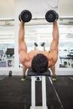 Mięśniowy mężczyzna ćwiczy z dumbbells w gym Obraz Royalty Free