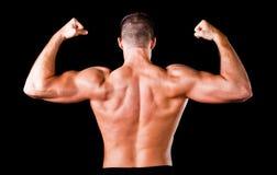Mięśniowy bodybuilder plecy Zdjęcie Stock