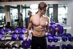 Mięśniowy mężczyzna pracujący w gym robi ćwiczeniom z dumbbells out, bodybuilder półpostaci męski nagi abs przydatność Zdjęcia Royalty Free