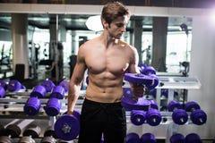 Mięśniowy mężczyzna pracujący w gym robi ćwiczeniom z dumbbells out, bodybuilder półpostaci męski nagi abs przydatność Fotografia Stock