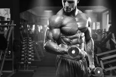 Mięśniowy mężczyzna pracujący w gym robi ćwiczeniom z dumbbells przy bicepsami out, silny męski półpostaci abs Obraz Stock