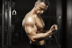 Mięśniowy męski bodybuilder robi triceps ćwiczeniu Fotografia Royalty Free