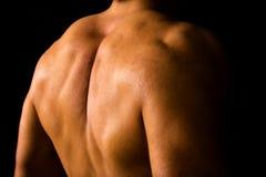 Mięśniowy męski plecy Fotografia Royalty Free