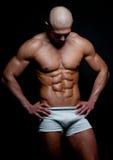 Mięśniowy model zdjęcie royalty free
