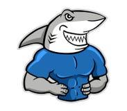 Mięśniowy rekin Ilustracja Wektor