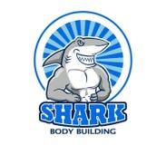 Mięśniowy rekinu logo Obrazy Stock