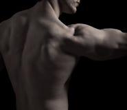mięśniowy tylny mężczyzna Zdjęcie Royalty Free