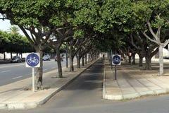 Między drzewami rowerowa ścieżka Fotografia Stock