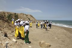 Międzynarodowa Nabrzeżna cleanup dnia aktywność w losu angeles Guaira plaży, Vargas stan Wenezuela obrazy stock