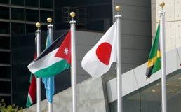 Międzynarodowe flaga w przodzie Narody Zjednoczone Lokują w Nowy Jork Fotografia Stock