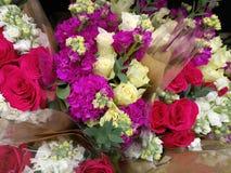 Miękcy delikatni wibrujący kwiaty zdjęcia royalty free