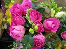 Miękcy delikatni wibrujący kwiaty fotografia stock
