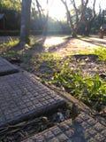 Miękka część jako światło słoneczne, Twardy jako cegła zdjęcie stock