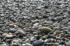 Miękka część skupiał się zamazanego obrazek peebles na plaży Zdjęcia Royalty Free