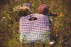 Miękka dzianie zabawka - niedźwiedź brunatny siedzi w torbie na trawie obraz stock