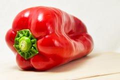 Miękka ostrość świeży czerwony pieprz na białym tle - Capsicum, solanaceae Fotografia Stock