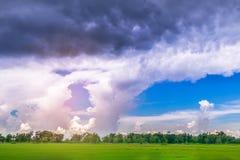 Miękka ostrość zielony irlandczyków ryż pole z pięknym niebem i chmurą w Tajlandia promienieje światła i obiektywu racy skutka br Fotografia Stock
