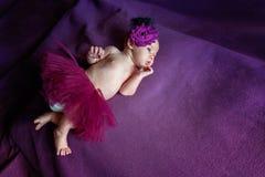 Miękki portret pokojowy słodki nowonarodzonego niemowlaka dziecka lying on the beach na łóżku podczas gdy śpiący w purpurowej koc fotografia royalty free