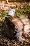 Miękki zabawkarski pies goni sowy w jesień lesie Zdjęcie Royalty Free