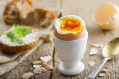 Miękkiej części gotowany jajeczny śniadanie Fotografia Stock
