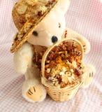 Miękkiej części jesieni Zabawkarski miś pluszowy Fotografia Royalty Free