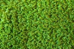 Miękkiej części zielona tekstura Fotografia Stock