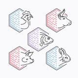 Mięsa wykładają icons& x27; set ilustracja wektor