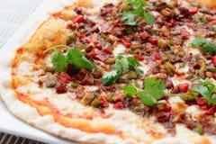 Mięsna pizza z gorącym kumberlandem Zdjęcia Stock