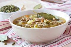 Mięsna polewka z wołowiną, Mung fasolki szparagowe, legumes, gorący indianin Zdjęcie Royalty Free