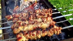 Mięsny prażak na skewers w brązowniku outdoors zdjęcie wideo