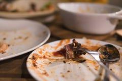 Mięso który opuszcza na talerzu jest różnymi karmowymi świstkami zdjęcie royalty free