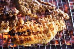 Mięso na grillu z płomieniem na terenach odkrytych grilla fotografia stock