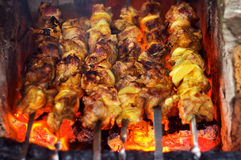 Mięso piec na otwierał ogień obrazy royalty free