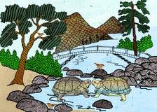 Miłość żółwie Fotografia Royalty Free