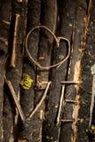 Miłość. Obraz Stock