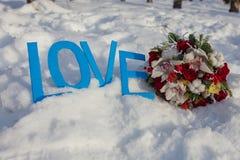 Miłość, biel, śnieg, sporty, konie, dwa, lov zabawa, outdoors, zimno, góra, tło, natura, drewno, kwiaty, kwiat, zabawa, zima Fotografia Stock
