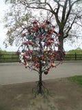 Miłość jest drzewem brać opiekę obrazy royalty free