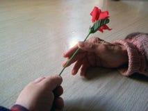Miłość jest kwiatem fotografia royalty free